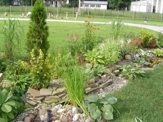 Фото посадить вдоль грядок фото сад